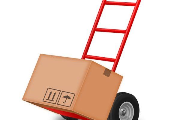 Un déménageur professionnel: pour en faire quoi?